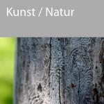 KURSE_kunst_natur