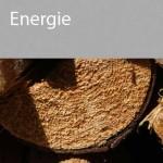 UEBERLEBEN_energie